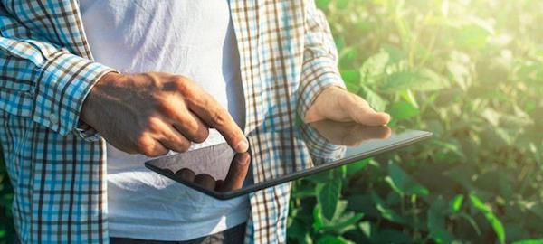 OCB lança plataforma digital cooperativas nas compras públicas