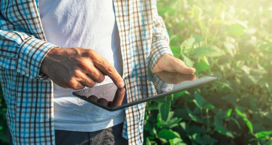 Fundação Cargill seleciona projetos de pesquisa em alimentação