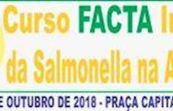 """Curso """"Impacto da Salmonella na Avicultura"""" começa amanhã em Campinas (SP)"""