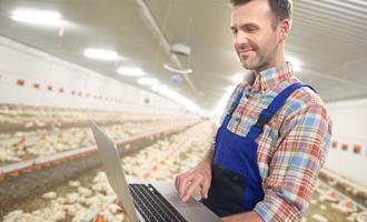 """Com investimento de US$ 1,3 mi, Uruguai inaugura primeiro sistema de """"caixas pretas avícolas"""""""