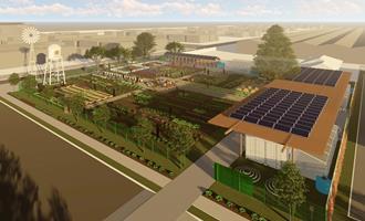Gabinete aprova pacto entre Índia e Brasil para cooperação em bioenergia