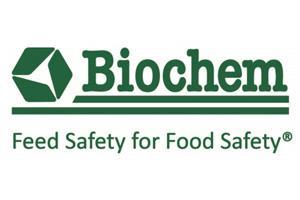 Biochem apresenta solução para biodisponibilidade de minerais em frangos de corte