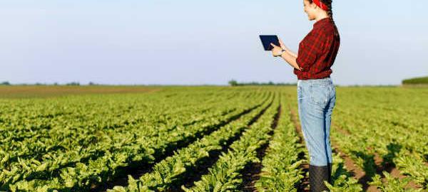 Participação de mulheres no agro cresce segundo Cepea