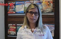 DESTAQUES: Insumos recuam e novo caso de PSC é reportado no Brasil