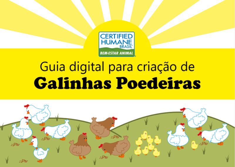 Certified Humane disponibiliza guia digital para criação de poedeiras