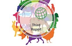 Relatório da OIE mostra progresso positivo na regulação e monitoramento do uso de antimicrobianos