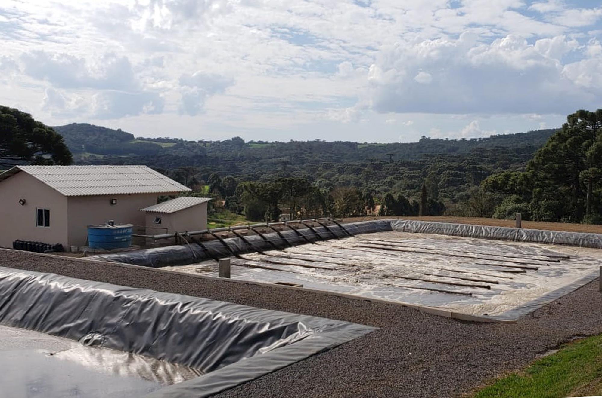 Dia de campo em Videira/SC aborda tratamento de efluentes da suinocultura