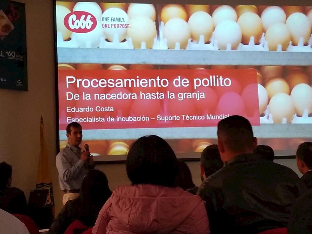 Seminário de Incubação recebe especialistas da Cobb-Vantress na Colômbia