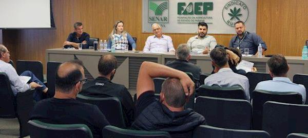 Faep prevê aumento de 6% na produção de suínos no Brasil em 2019