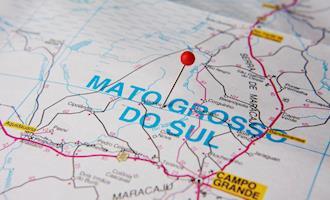 Exportações de carne suína do Mato Grosso do Sul crescem 1.548% em 2020