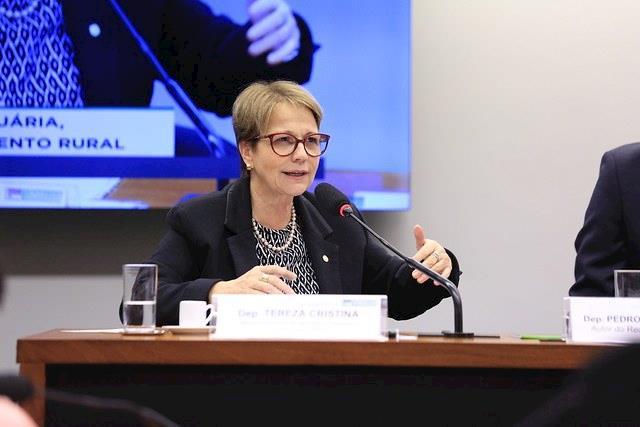 Mundo não conseguirá atender demanda da China, diz ministra