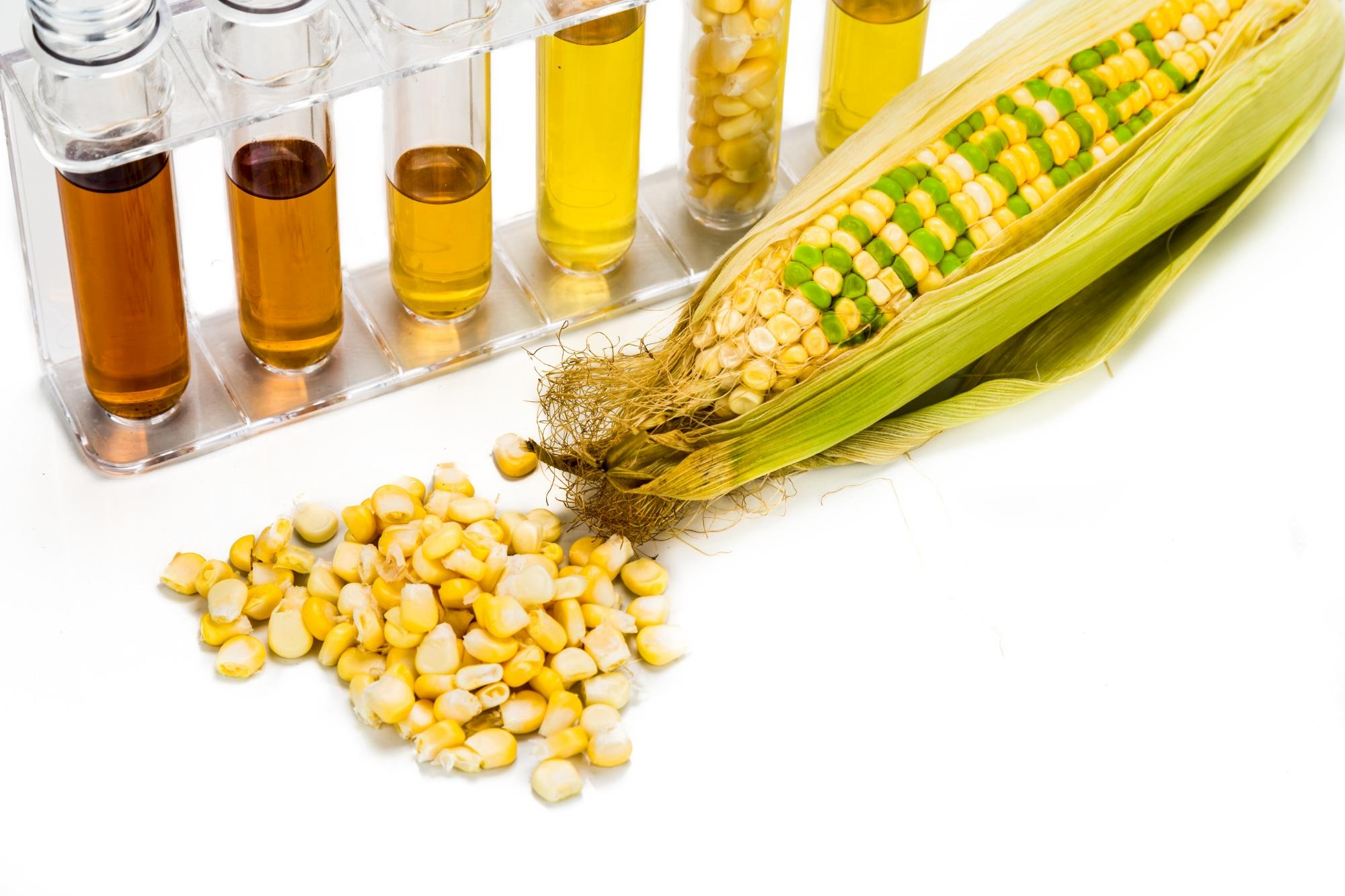 Quando é viável investir no etanol de milho?