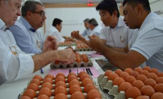 Granja Higashi é campeã em ovos brancos e vermelhos