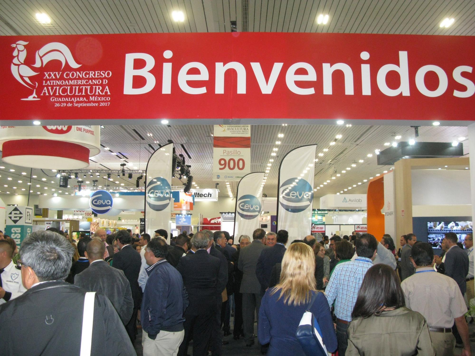 Congresso Latino Americano de Avicultura ocorre em outubro