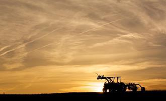 Agropecuária é único setor com crescimento na pandemia, diz IBGE