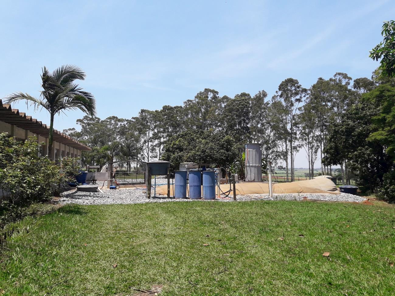 Pesquisas da SAA disponibilizarão tecnologia IZ com menor impacto ambiental para produção de suínos