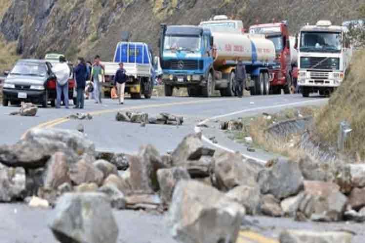 Frangos estão morrendo na Bolivia; entenda