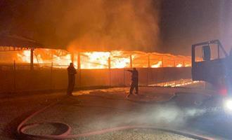 Incêndio destrói aviário com 90 mil aves em Santa Maria de Jetibá