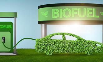 Estudo aponta estratégia para abrandar mudança no clima com adoção de biocombustíveis