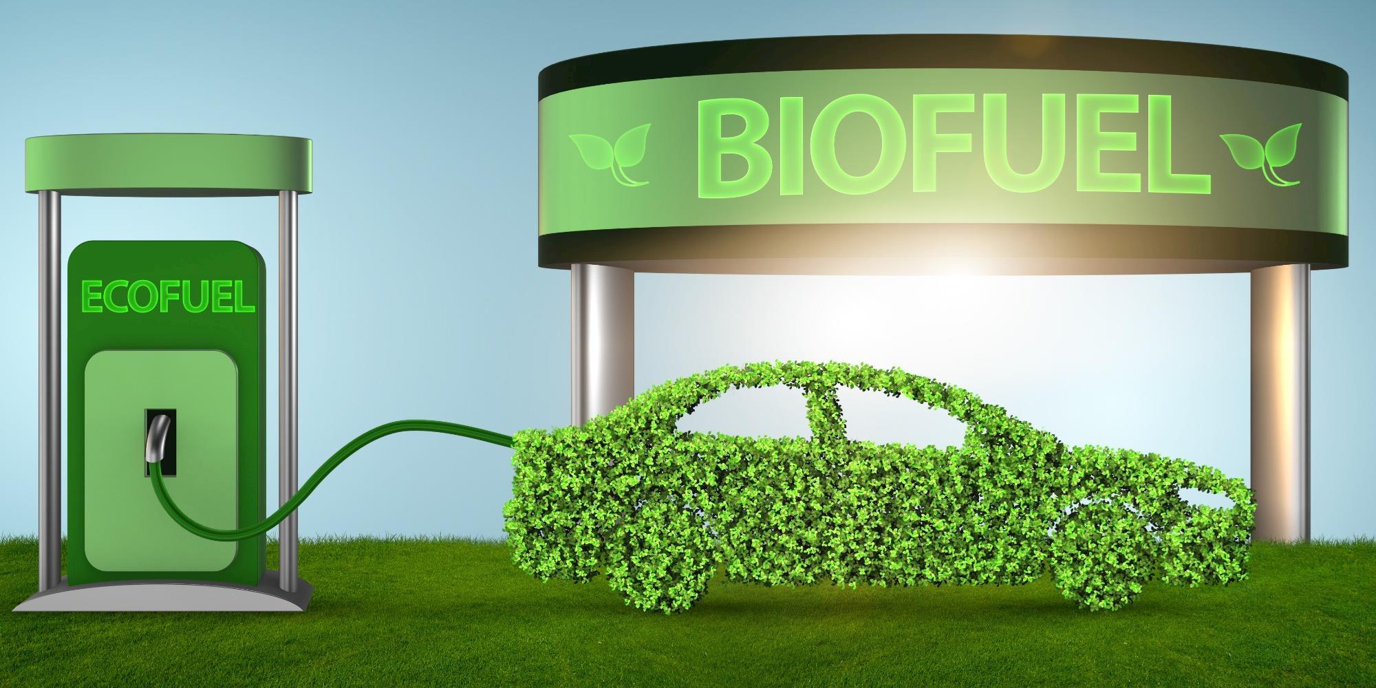 Aumenta a demanda por biocombustíveis no mundo