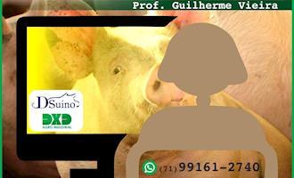 VeteAgrogestão e Farmácia na Fazenda promovem pacotes de aulas on line de Gestão de Granjas de Suínos