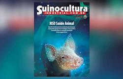SI293, si293, 2020, revistas, fotos atualizadas