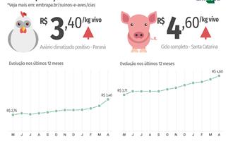 Custos de produção de frangos de corte e de suínos disparam em abril
