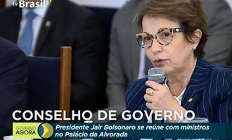 Brasil garante alimentos para consumo interno e exportações durante a pandemia, diz ministra