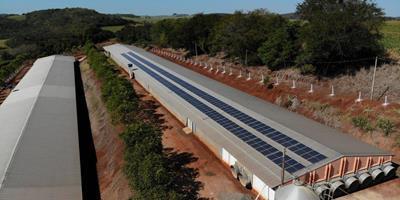 Paraná incentiva uso de energias renováveis em propriedades rurais