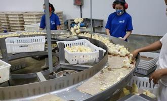 Único frigorífico apto a exportar em Rondônia, Globoaves vai ampliar abates