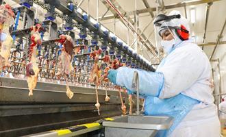 Dália pode exportar carne de frango a países de origem muçulmana