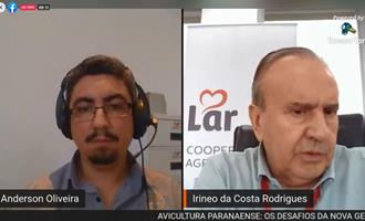 LIVE - Avicultura Paranaense e os desafios da nova gestão do Sindiavipar
