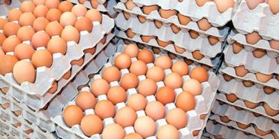 Insumos mais caros devem impactar também no preço do ovo
