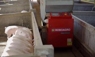Disparam encomendas de robô brasileiro que alimenta suínos enquanto toca música clássica