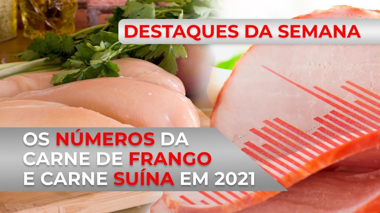 DESTAQUES - Os números da carne de frango e da carne suína em 2021