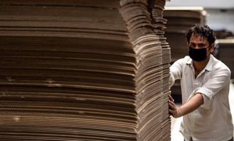 Biodiesel de papelão: nova aposta tecnológica promete mais produção e menos poluição