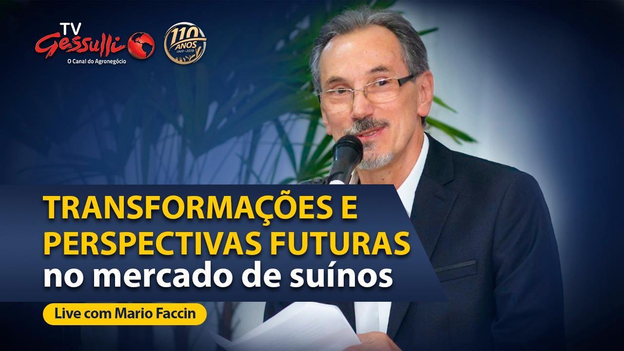 Em live, Mario Faccin falou sobre as transformações e perspectivas no mercado de suínos