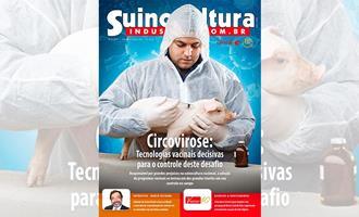 Suinocultura Industrial - Passo essencial para o controle do PCV2