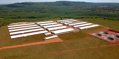 Granja Rio Verde representa um marco para expansão da Suinocultura