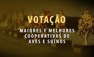 Em momento decisivo, votação online em três categorias do Prêmio Quem é Quem segue até 21 de março
