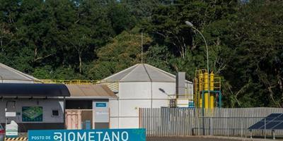 CIBiogás apresenta Nova Técnica - Panorama do Biogás no Brasil na AveSui 2021