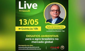 Live: Desafios ambientais para o agro brasileiro no mercado global, com consultor Pedro de Camargo Neto