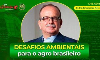 Por credibilidade ambiental, o Brasil precisa respeitar suas próprias leis primeiro