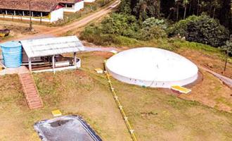 Transformação de dejetos das granjas em energia limpa no Rio Grande do Sul