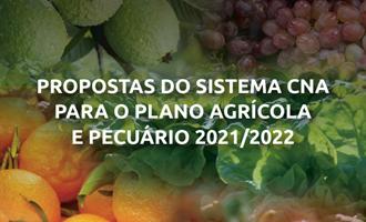 Propostas para o plano agrícola e pecuário 2021/2022 são entregues à Ministra