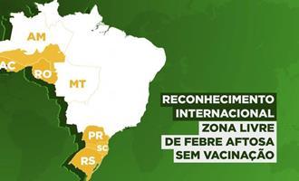 Brasil tem mais seis estados reconhecidos como áreas livres de febre aftosa sem vacinação