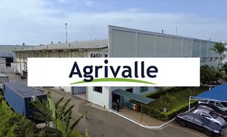Agrivalle apresenta o impacto da sustentabilidade para o sojicultor em novo Webinar