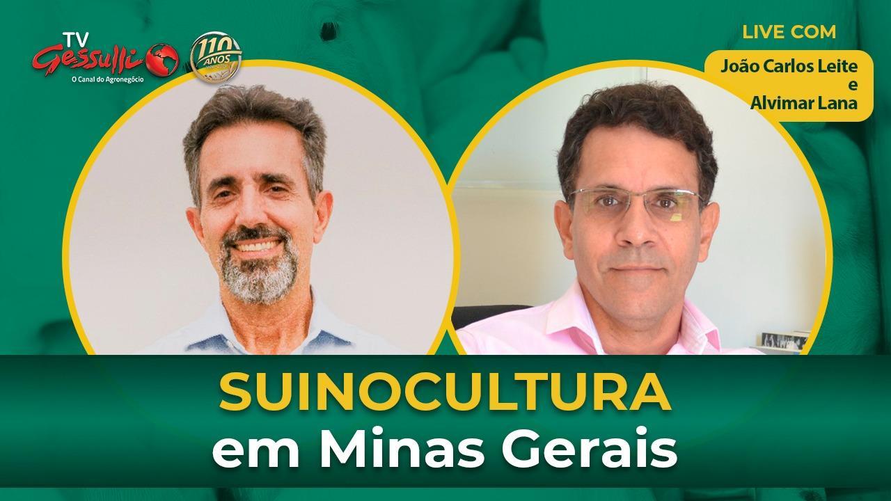 Panorama e mercado da suinocultura no estado de Minas Gerais, com ASEMG