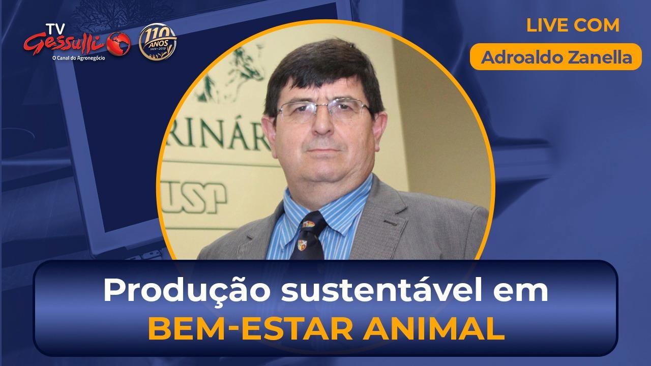 Produção sustentável e avanços em bem-estar animal | Live com Adroaldo Zanella