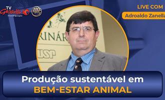 Live hoje sobre produção sustentável e avanços em bem-estar animal